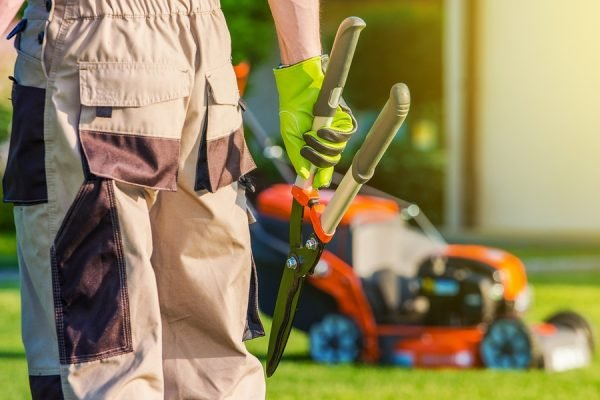 lawn care home maintenance