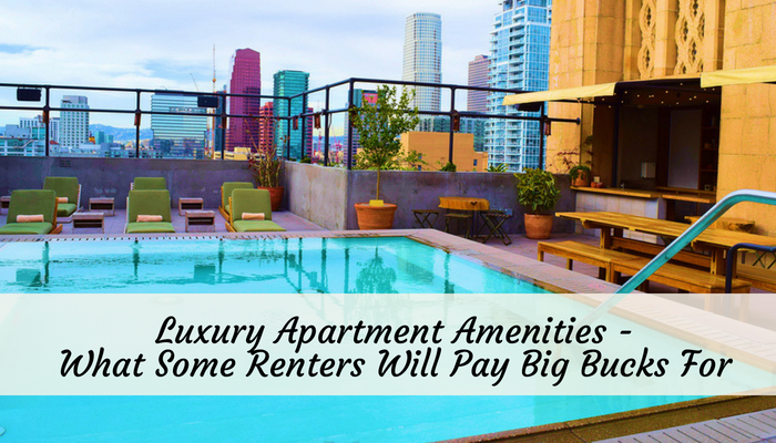 Luxury Apartment Amenities – What Some Renters Will Pay Big Bucks For