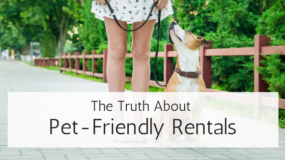 The Truth About Pet-Friendly Rental Properties