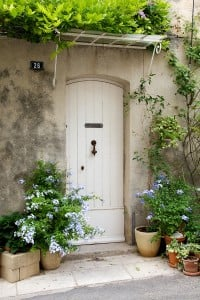 White French front door surrounded by flowers