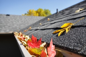 Fall Maintenance for your Rental Properties