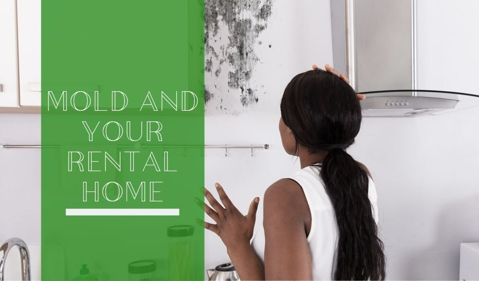 Mold and Your Rental Home