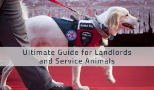 landlords and service animals