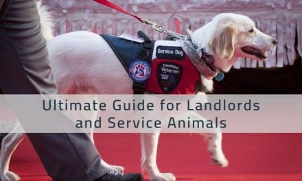 Ultimate Guide for Landlords and Service Animals