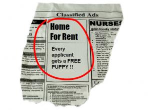 Rental Listing Ad