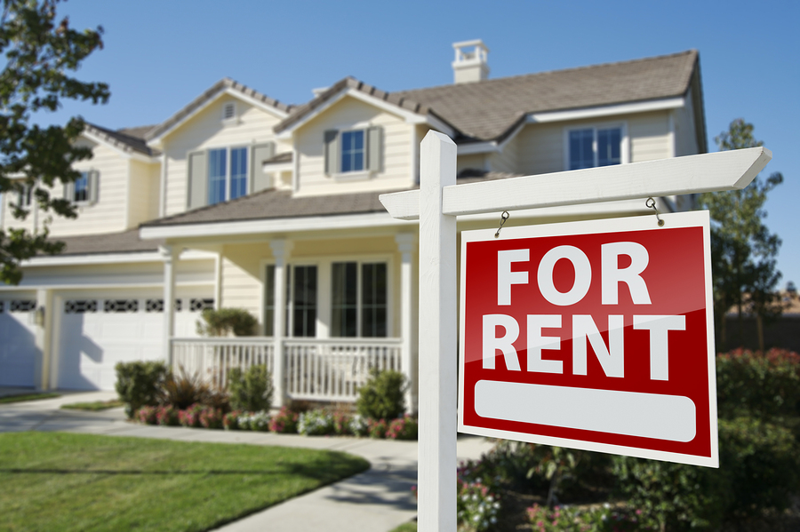Available Rentals Report – New Feature