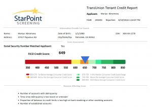 New Full Credit Report