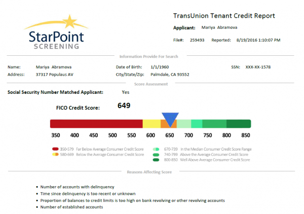 New Full Credit Report