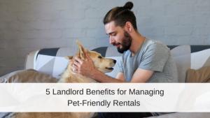 pet-friendly rentals