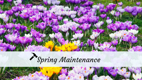 Must-Do Spring Maintenance Tasks for Your Rentals- Infographic
