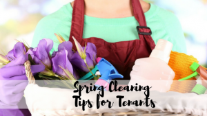 spring cleaning for tenants