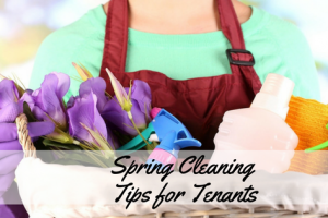 Spring Cleaning Tips for Tenants – Infographic