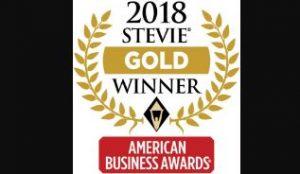 stevie winner