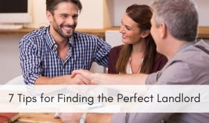 finding the perfect landlord