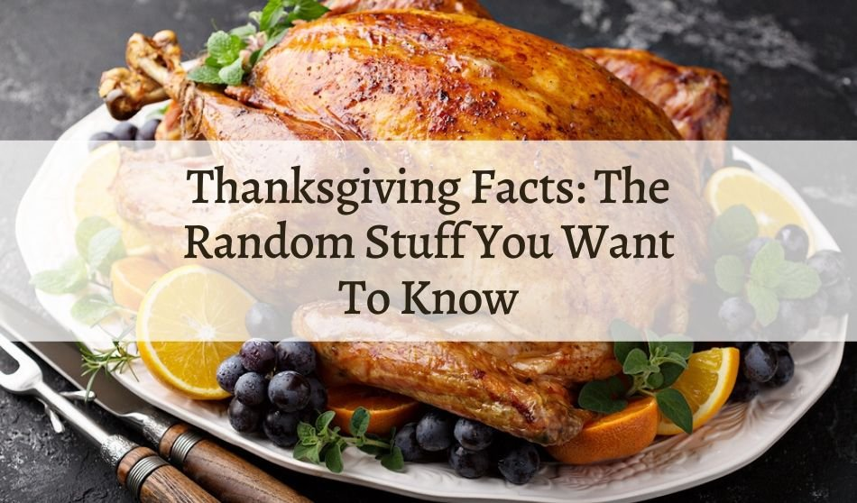 Thanksgiving Facts: The Random Stuff You Want To Know