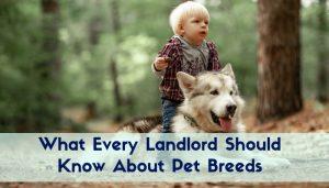pet breeds
