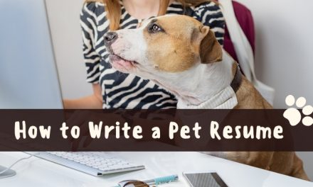 How to Write a Pet Resume For Your Rental Application
