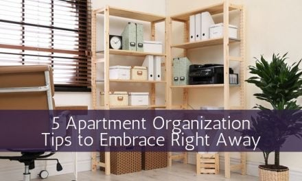 5 Apartment Organization Tips to Embrace Right Away