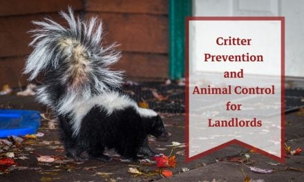 Critter Prevention and Animal Control for Landlords