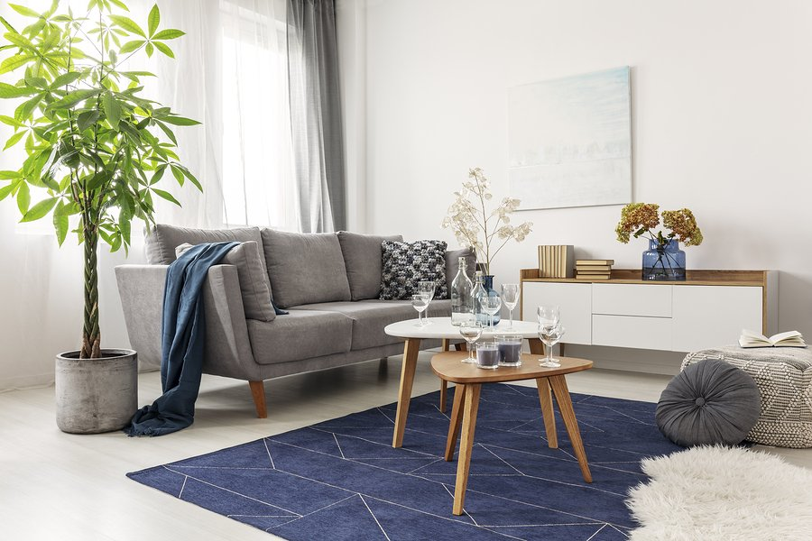 pantone classic blue rug