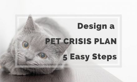 Design a Pet Crisis Plan in 5 Easy Steps
