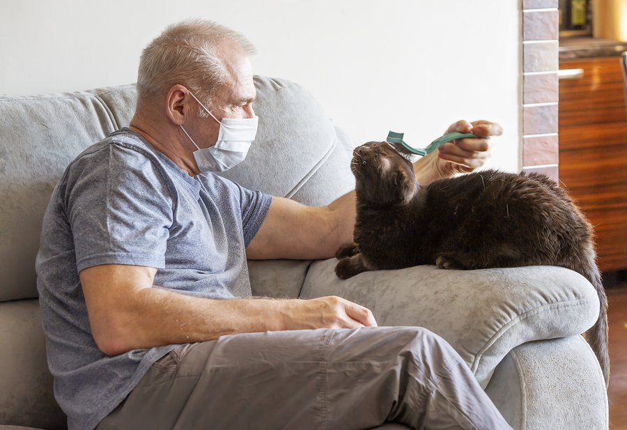 Have a pet preparedness plan in place for your cat if you become ill