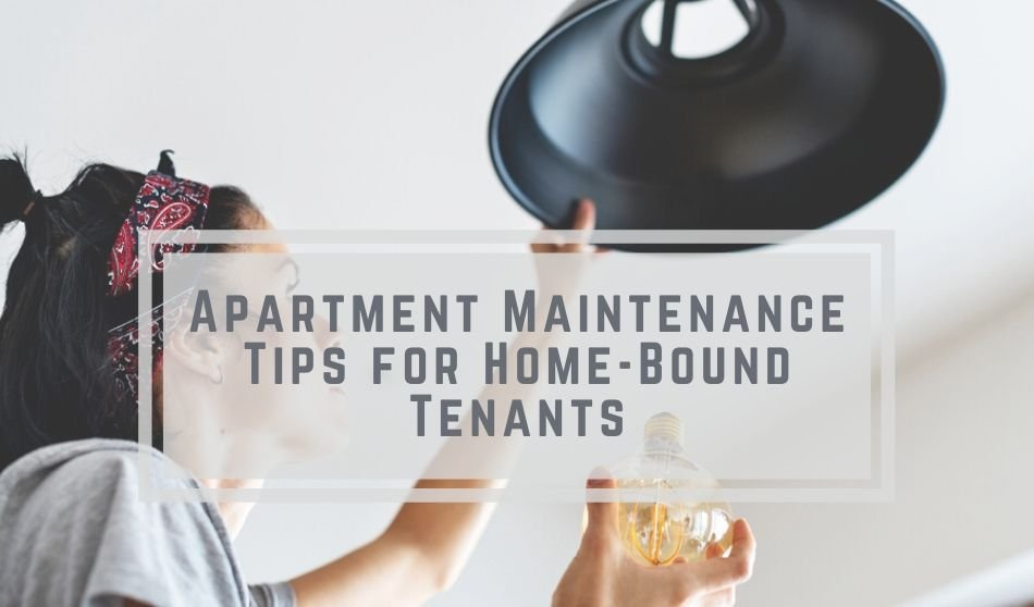Apartment Maintenance Tips for Home-Bound Tenants