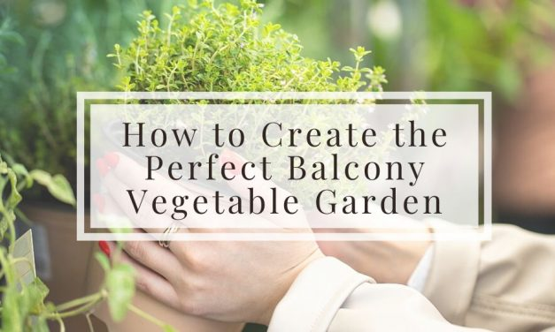 How to Create the Perfect Balcony Vegetable Garden