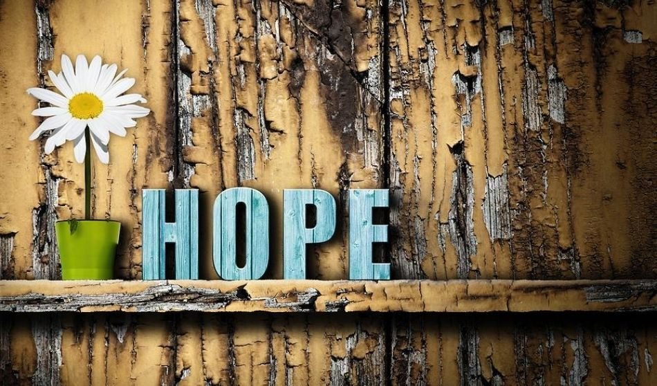 Moving forward with Hope and Tenant Resources to Help With Rent