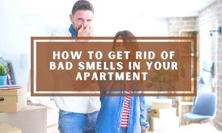 How to Get Rid of Bad Smells in Your Apartment