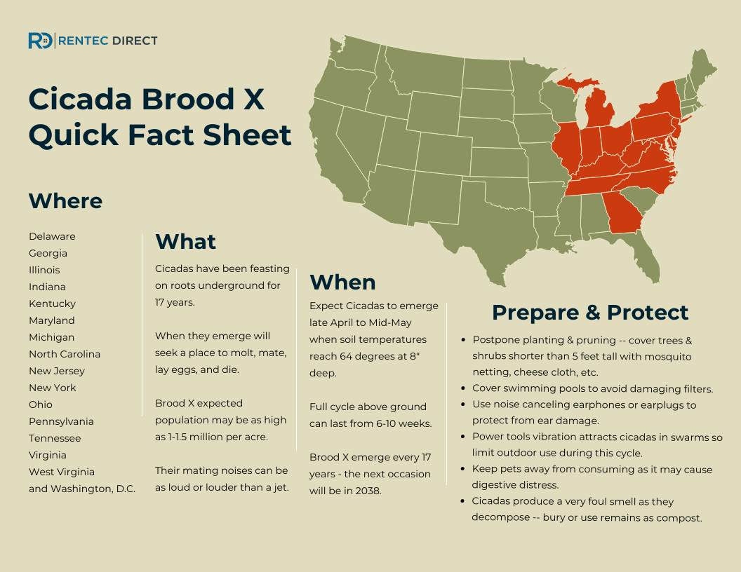 Cicada Brood X Quick Fact Sheet Prepare and Protect Infographic