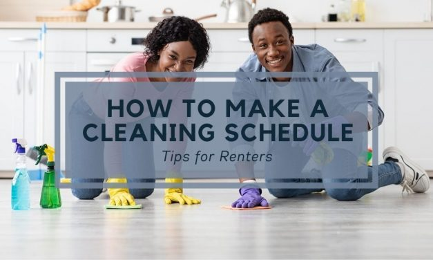 How to Make a Cleaning Schedule | Tips for Renters