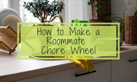 How to Make a Roommate Chore Wheel | Tips for Renters