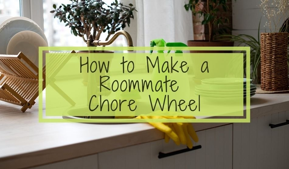 How to Make a Roommate Chore Wheel   Tips for Renters