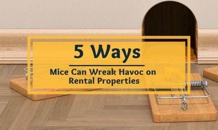 5 Ways Mice Can Wreak Havoc on Your Rental Properties