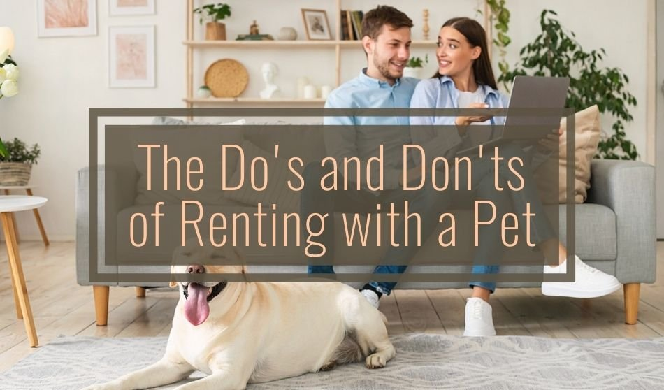 The Do's and Don'ts of Renting With a Pet
